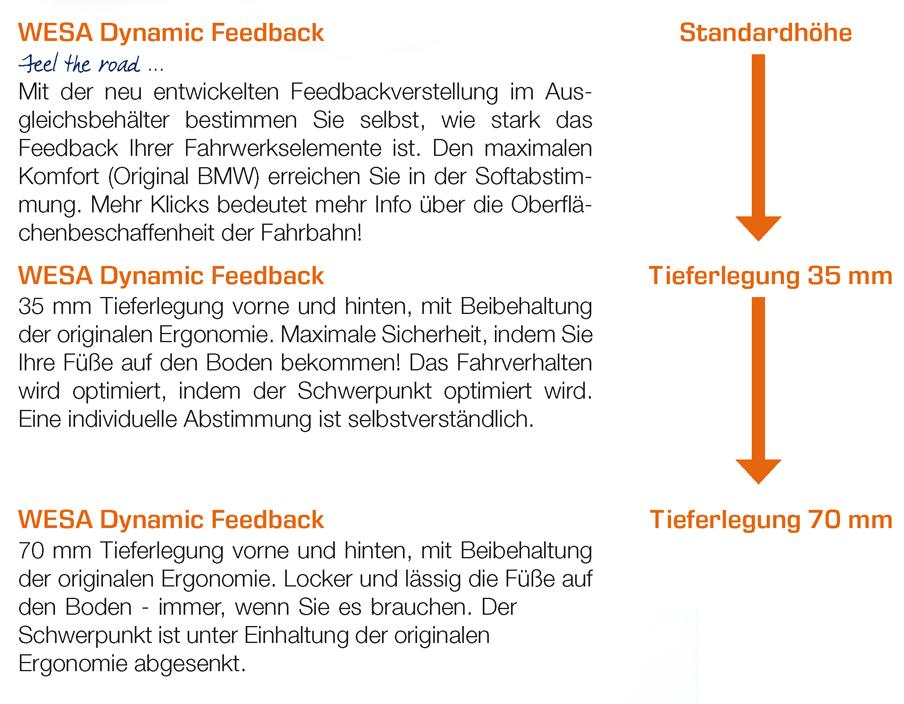 WESA Dynamic Feedback Beschreibung